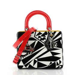 Lady Dior Bag Limited Edition Matthew Porter Printed Leather Medium