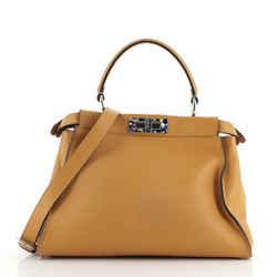 Peekaboo Bag Leather with Plexiglass Detail Regular