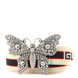 Butterfly Web Logo Belt Elastic with Metal and Crystals Wide 80