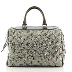 Speedy Handbag Limited Edition Sunshine Express 30