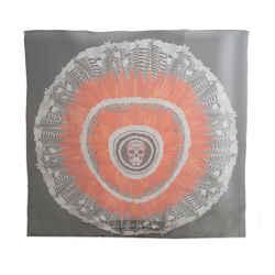 Alexander Mcqueen Silk Printed Scarf