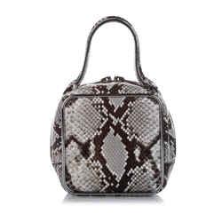 Vintage Authentic Alexander Wang Brown Halo Square Python Leather Handbag CHINA