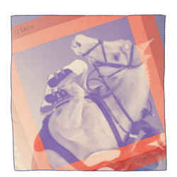 Le Saut H Scarf Printed Silk 90