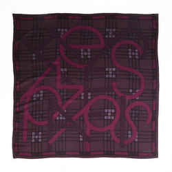 Hermes Scarf Anamorphee Purple Cashmere Silk