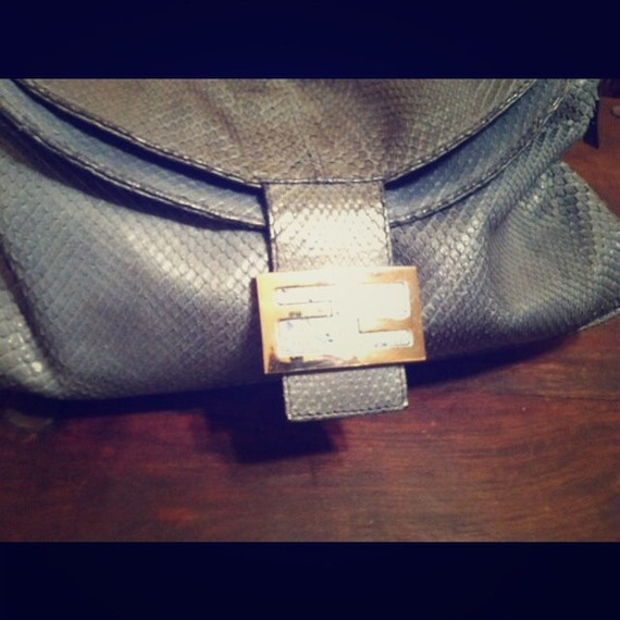 FENDI Python bag