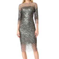 Monique Lhuillier Silver Illusion Dress