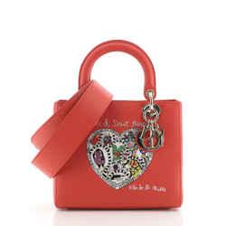 Lady Dior Bag Limited Edition Niki de Saint Phalle Embroidered Leather Medium