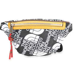 Gucci x The North Face Black & White Nylon Belt Bag